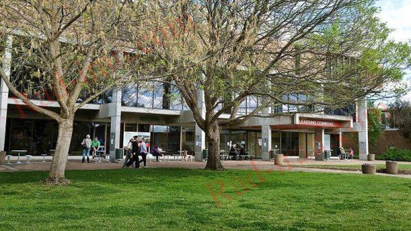 دانشگاه چارلز استوارت