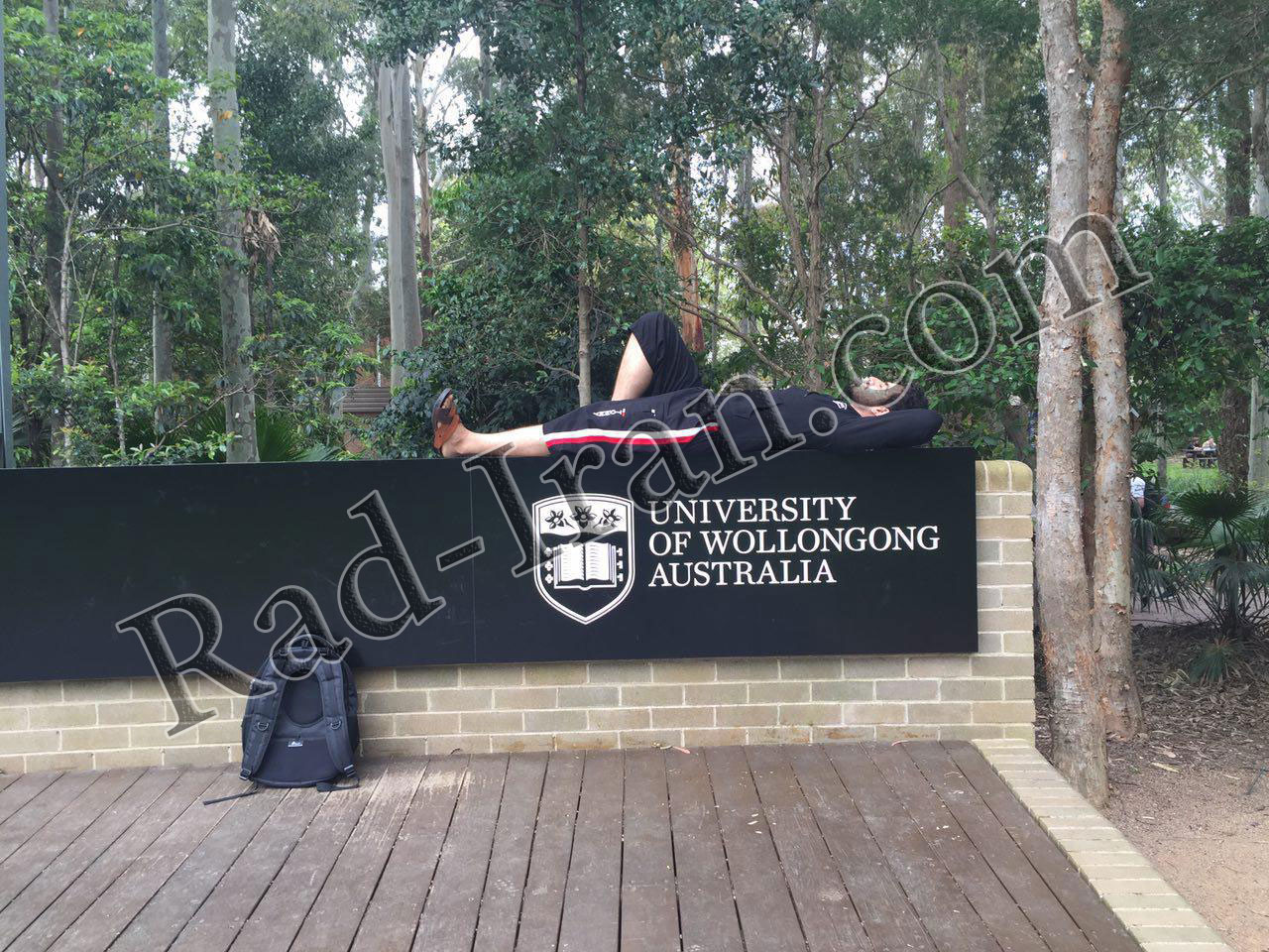 دانشگاه ولنگونگ