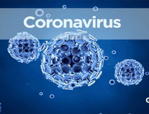 کرونا ویروس و اخبار خوب در استرالیا